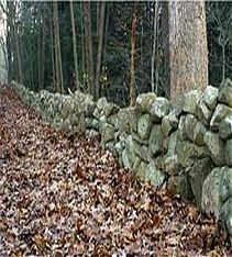 WordPress picture, New England's Famous Minuteman Stone Wall.
